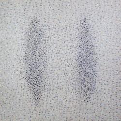 Вибрации II / Vibrations II / 2008 / 135/135cm